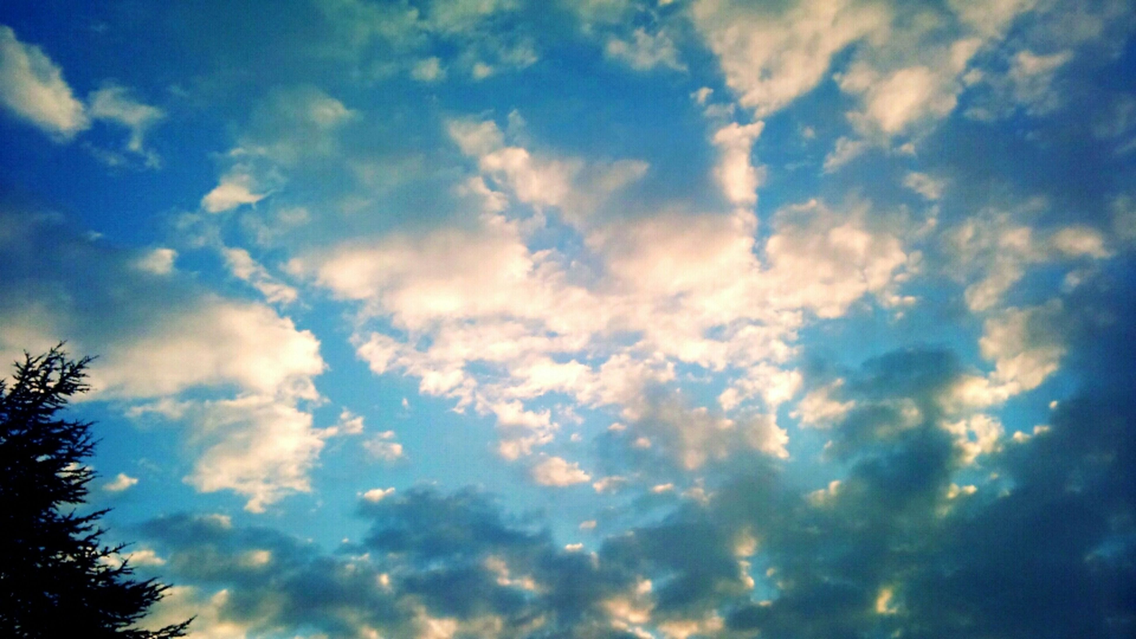 low angle view, sky, cloud - sky, tranquility, beauty in nature, cloudy, scenics, nature, tranquil scene, cloud, cloudscape, blue, sky only, silhouette, tree, idyllic, outdoors, backgrounds, no people, day