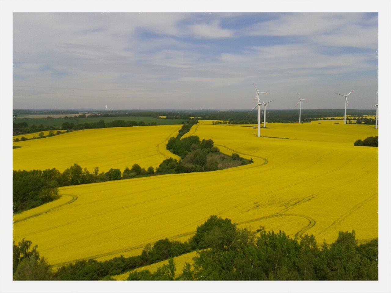 Landscape With Wind Turbines In Field