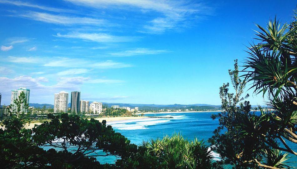 Sea Tree Skyscraper Beach Blue Architecture Sky Water Nature Scenics City Palm Tree Beauty In Nature Ocean Australia Gold Coast EyeEmNewHere See