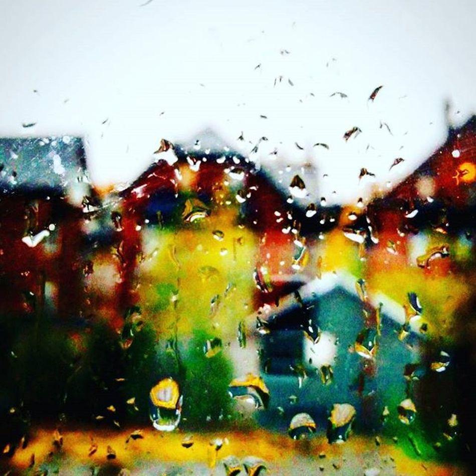 ...love you freaking goddam rain Rain Rainintoronto Torontorain