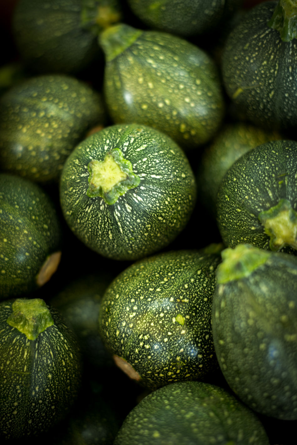 Backgrounds Bio Close Up Close-up Courgette Farm Food Food And Drink Freshness Fruit Full Frame Green Green Color Healthy Healthy Eating Nature No People Organic Outdoors Raw Vitality Vitamins