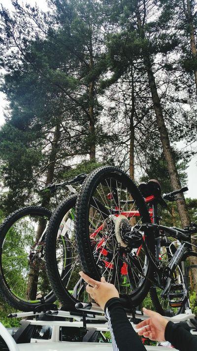 all set. 🚴💙 Bike Bike Ride Biker Boy Bike Love Bike Photography Swinley United Kingdom