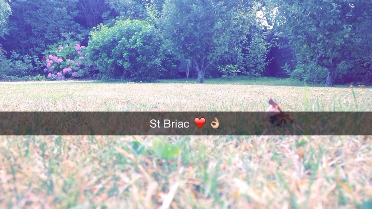 Hanging Out Check This Out Enjoying Life St Briac ✨