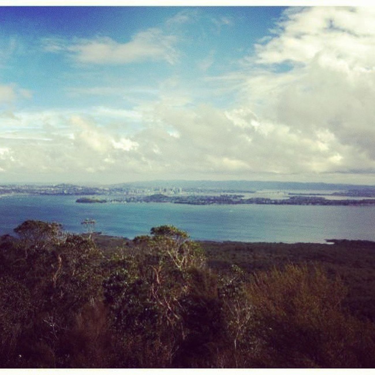 Rangitoto island New Zealand. This is shot from the top of the volcano. The sight was something to behold. Views Island Volcano Rangitoto newzealand auckland australia nature clean holiday joyful company