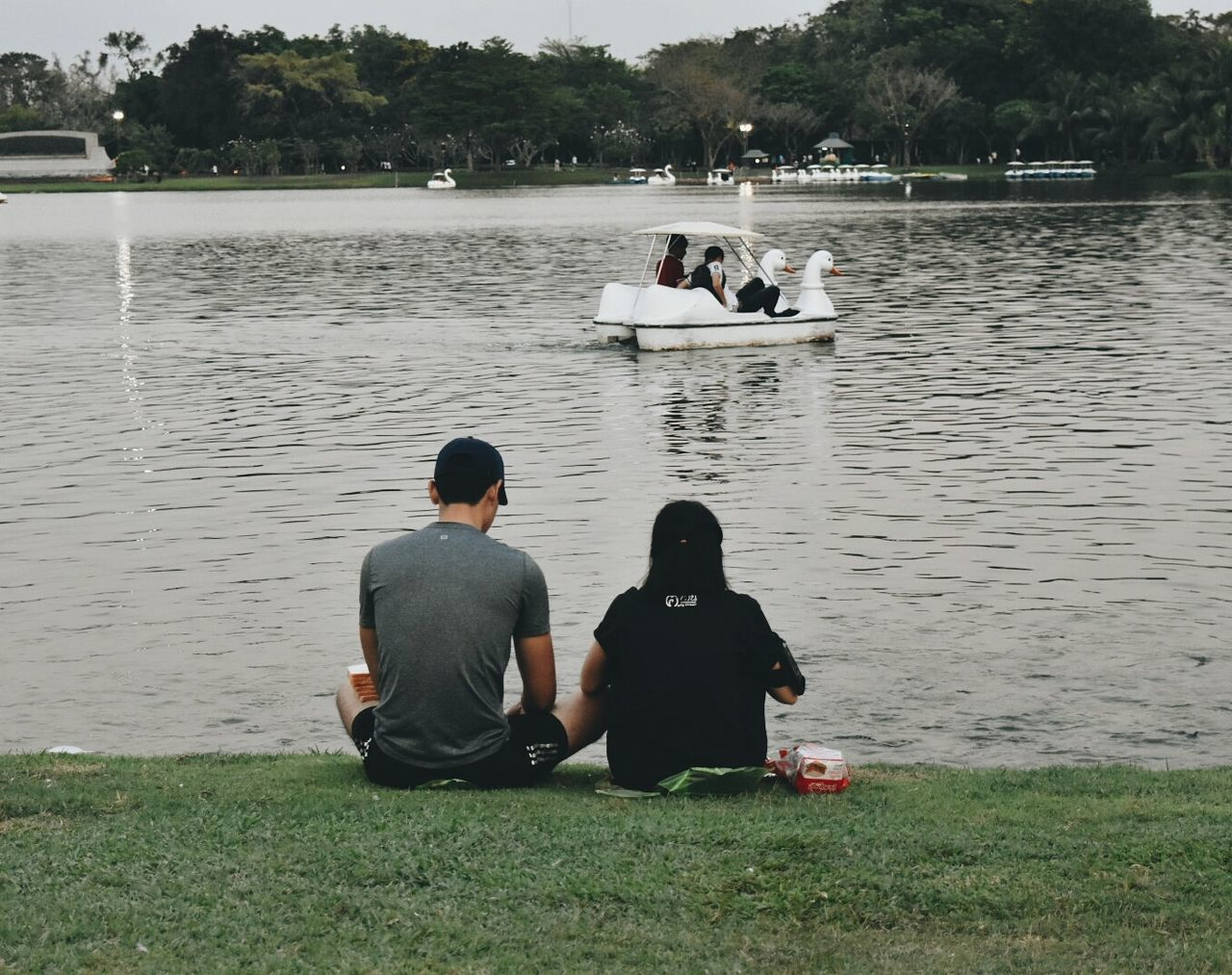 water, real people, rear view, sitting, lake, two people, tree, leisure activity, women, lifestyles, men, day, grass, togetherness, outdoors, nature, vacations, full length, swan, people