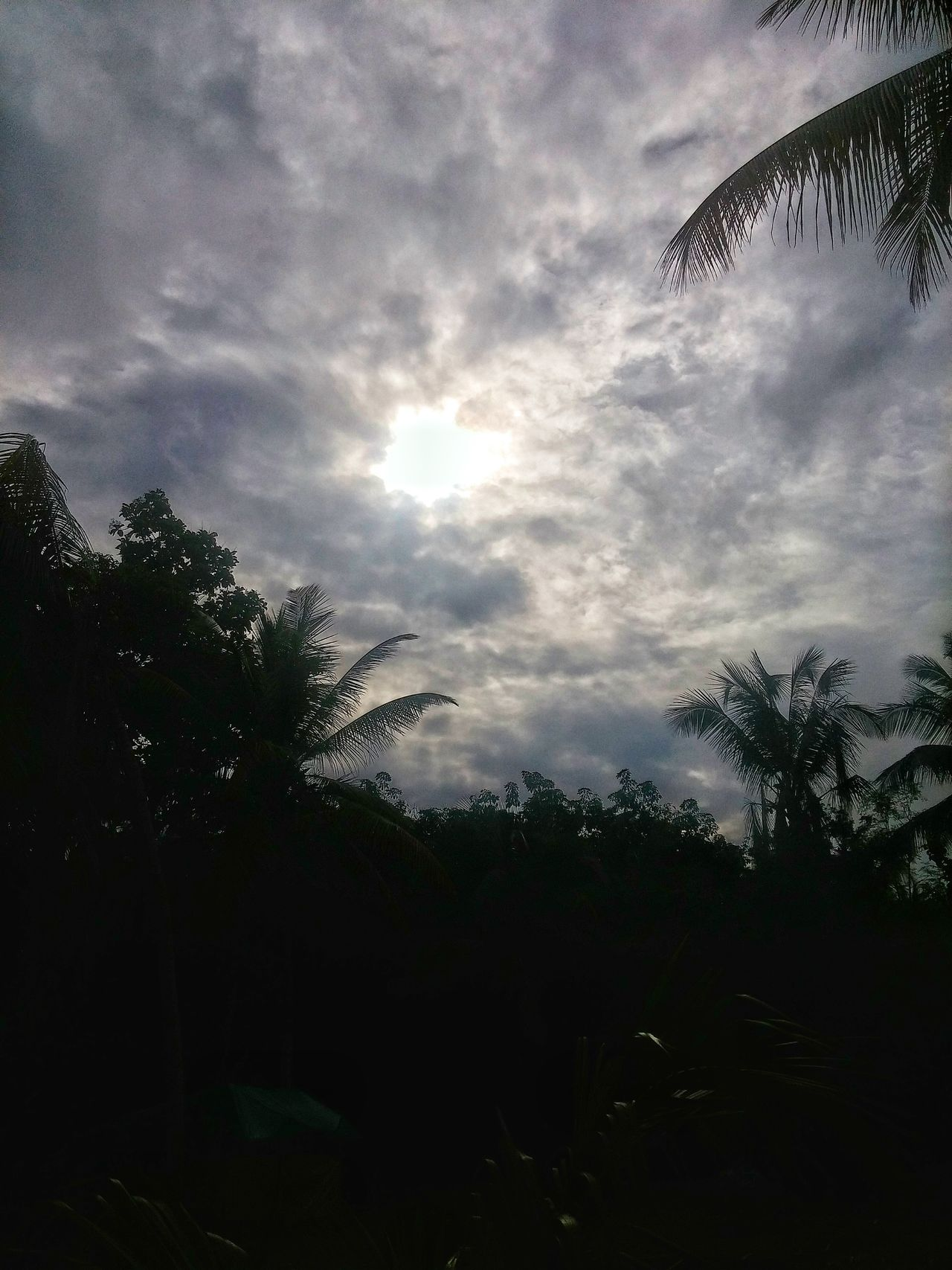 Kerala The Gods Own Country ;) Kerala India Malappuram Melattur Sky Skylovers Lgg3shot Breathtaking Mesmerizing Beautiful Nature Earth Buildings & Sky India Beautiful LGg3photography Beauty Beauty In Nature Clouds Green Sun After The Rain