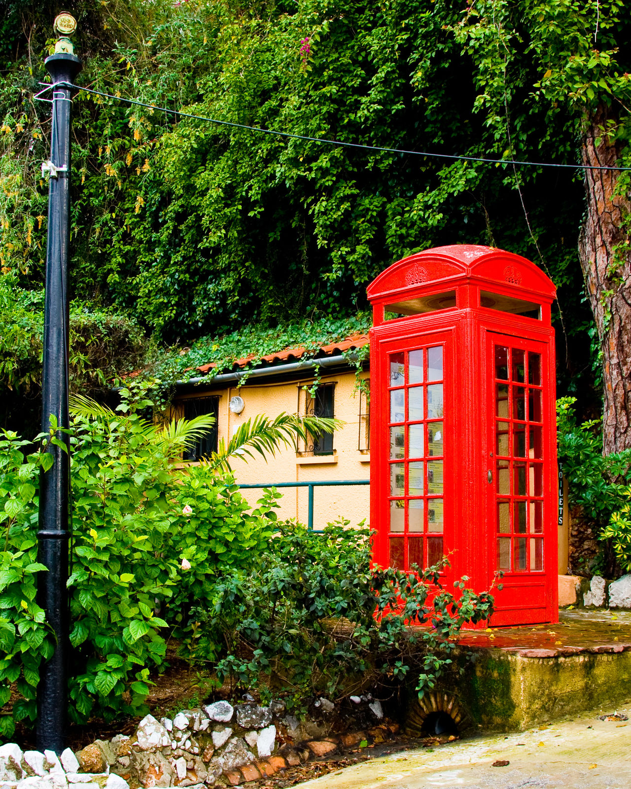 Architecture Built Structure Day Garden Gibraltar Green Color Growth Nature No People Outdoors Red Red Phone Box Red Phone Boxes Red Telephone Box Telephone Booth Tree
