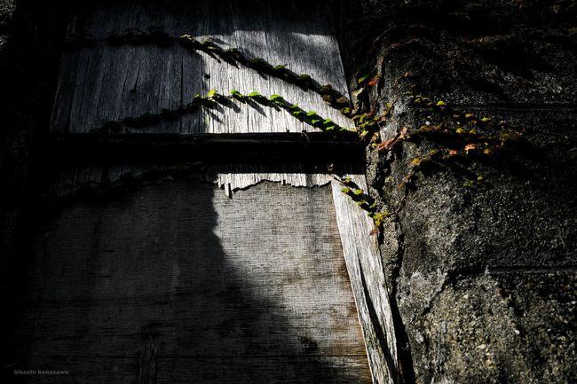廃れた感じ好き。 Ruins Photography Nokogiriyama Deserted House 鋸山 Photo