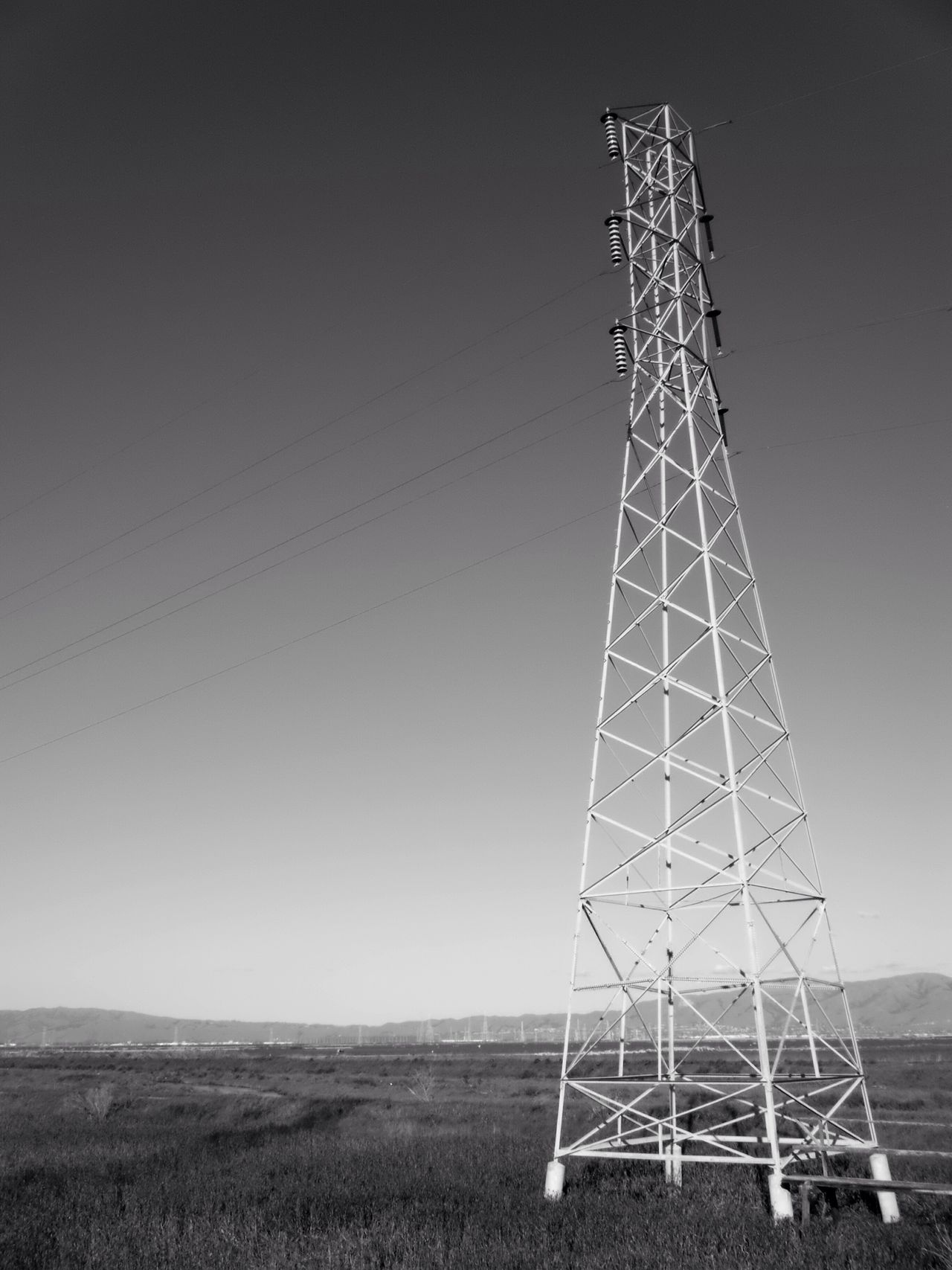 rise above the marsh Black And White Blackandwhite Clear Sky Electricity  Low Angle View Field Cable No People Power Line  Day Electricity Pylon Technology Landscape Grass Sky Outdoors Nature Marsh Wetlands San Francisco Bay California No Budget Photography