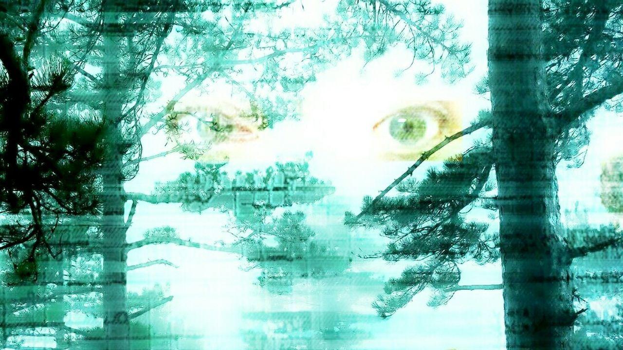 Eyesoftheforest Weirdness Eyes Green Eyeseyesinthewoods Experiments In Double Exposure