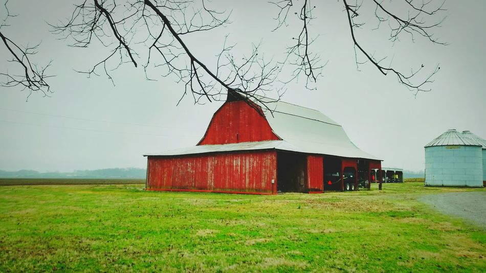 Barn Redbarn Grass Green Greengrass Agriculture Architecture Field Farm Farming Ecology GMO Farmhouse Farmtotable Heartland Silo Building Exterior MidWest Sky Landscape No People Built Structure Outdoors Cloud - Sky Nature Minimalist Architecture