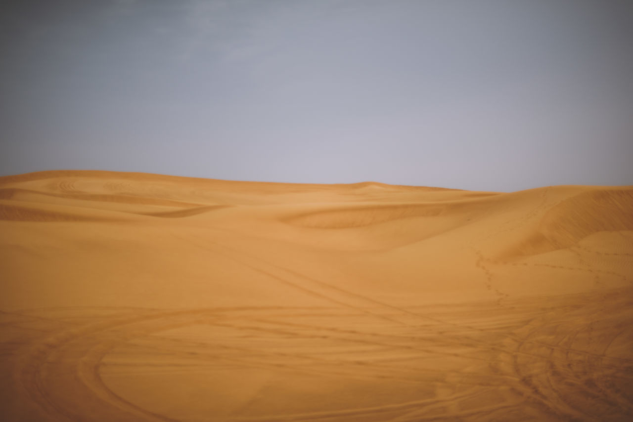 Arid Climate Beauty In Nature Clear Sky Day Desert Dubai Environment Extreme Terrain Landscape Nature No People Outdoors Physical Geography Sand Sand Dune Scenics Sky Tranquil Scene UAE United Arab Emirates