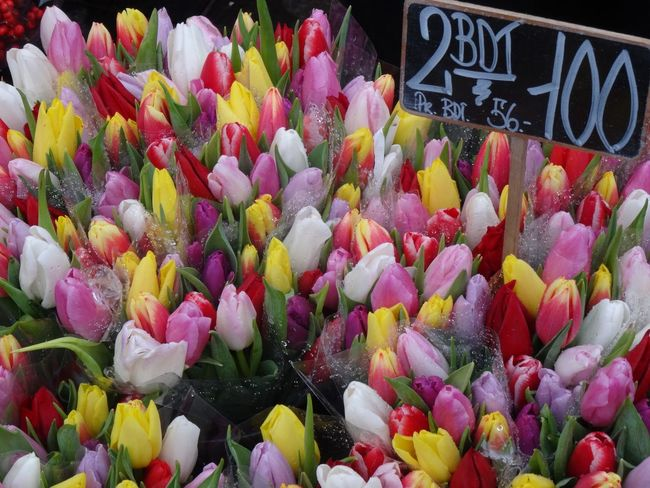 Christmas tulips Bouquets Christmas Close-up Colorful Colourful Flowers Colours Copenhagen, Denmark Display Flowers For Sale Full Frame Market Multi Colored No People Pink Color Retail  Still Life Tulips🌷