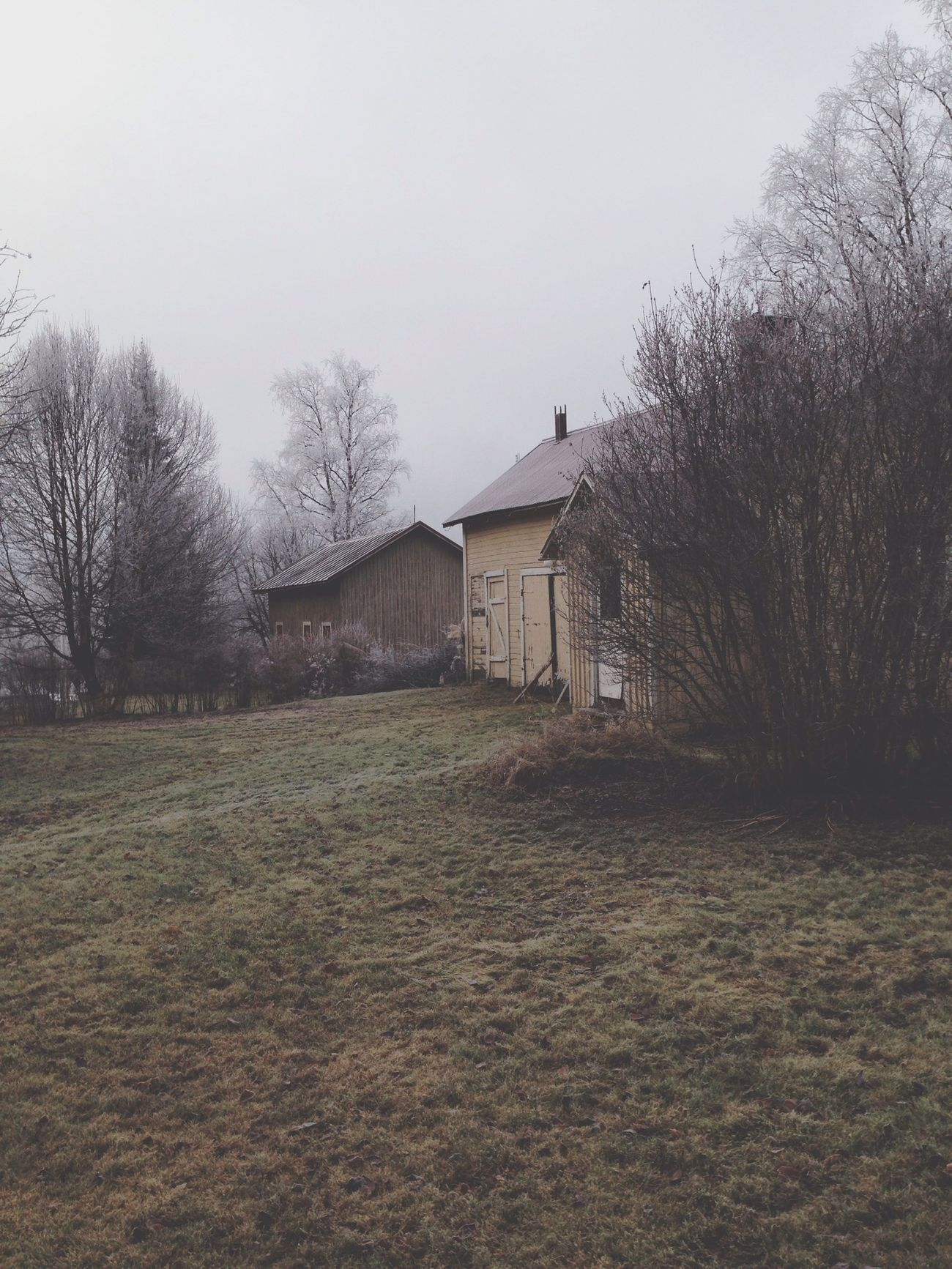 Frozen morning. Filippa K Asks: What Inspires You? Skrill IT Far From Home Autumn Halloween