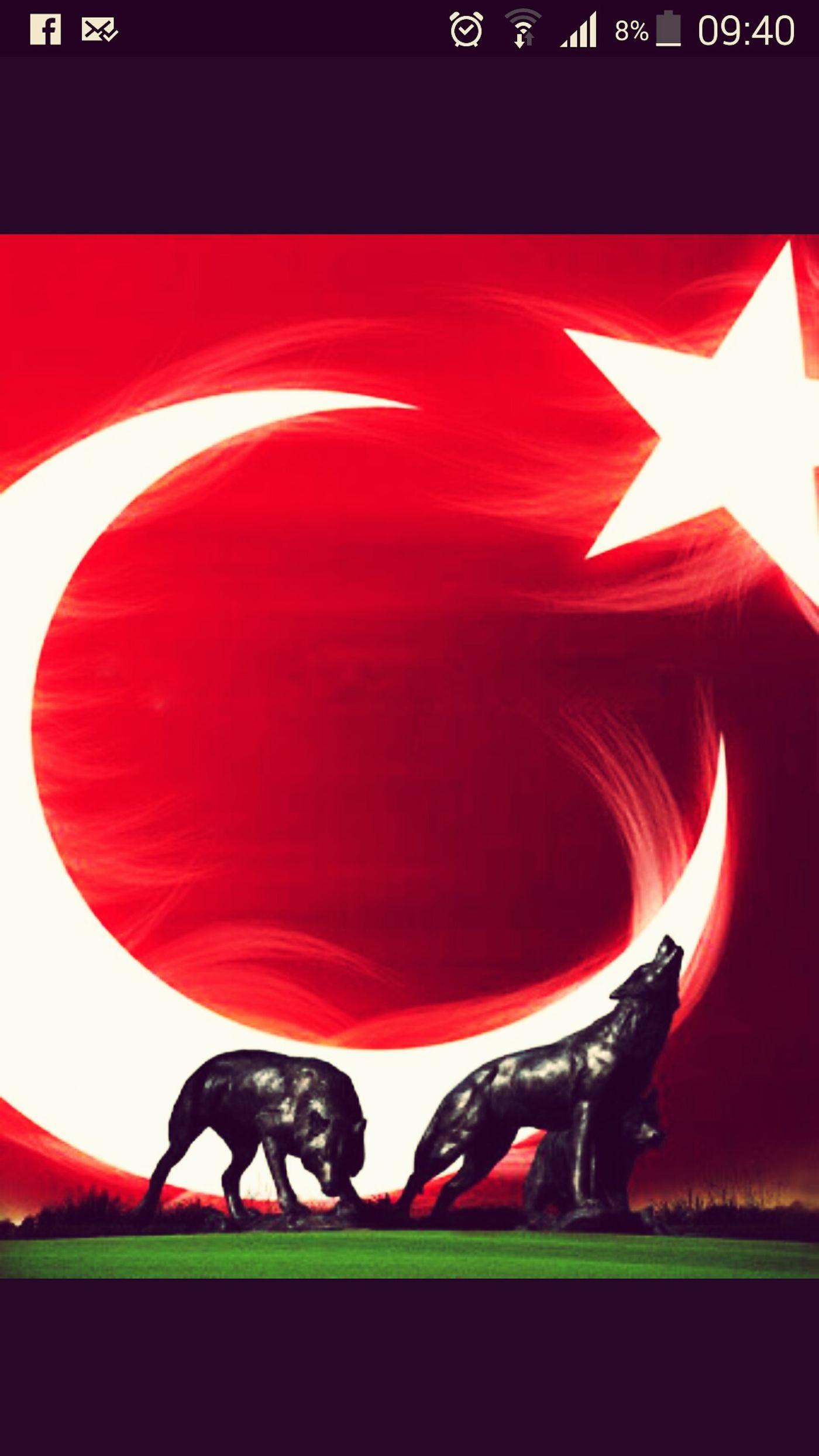 şehitler ölmez Vatan Bölünmez Türkiye ıstanbul önce Vatan