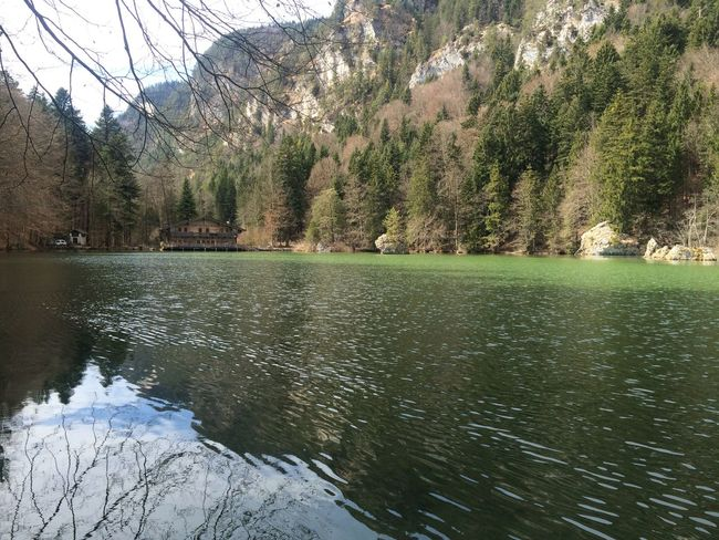 Alpen Austria ❤ Beauty In Nature Bergsee Hanging Out Klar Lake Mountain Mountains Nature Non-urban Scene S Scenics Tirol  Tranquil Scene Tranquility Tree Wald Water Waterfront