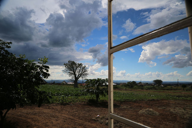 Looking out window in Gumbani South Africa. Baobab Tree Beauty In Nature Cloud Cloud - Sky Cloudy Day Fence Field Grass Growth Gumbani Landscape Nature No People Outdoors Overcast Rural Scene Scenics Sky South Africa Tranquil Scene Tranquility Tree Window