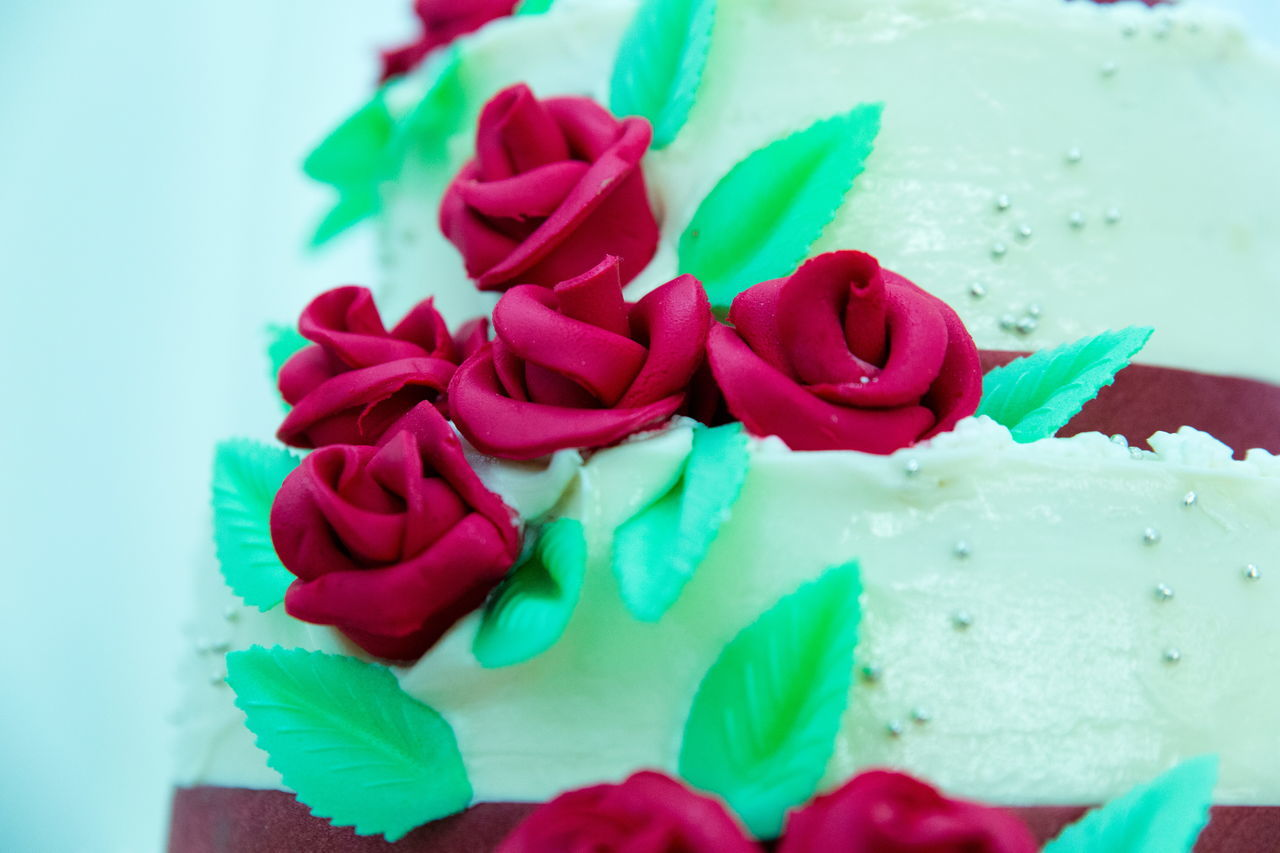 sweet food, flower, freshness, indulgence, close-up, food and drink, petal, dessert, food, no people, unhealthy eating, temptation, rose - flower, indoors, green color, ready-to-eat, fragility, red, flower head, beauty in nature, nature, day