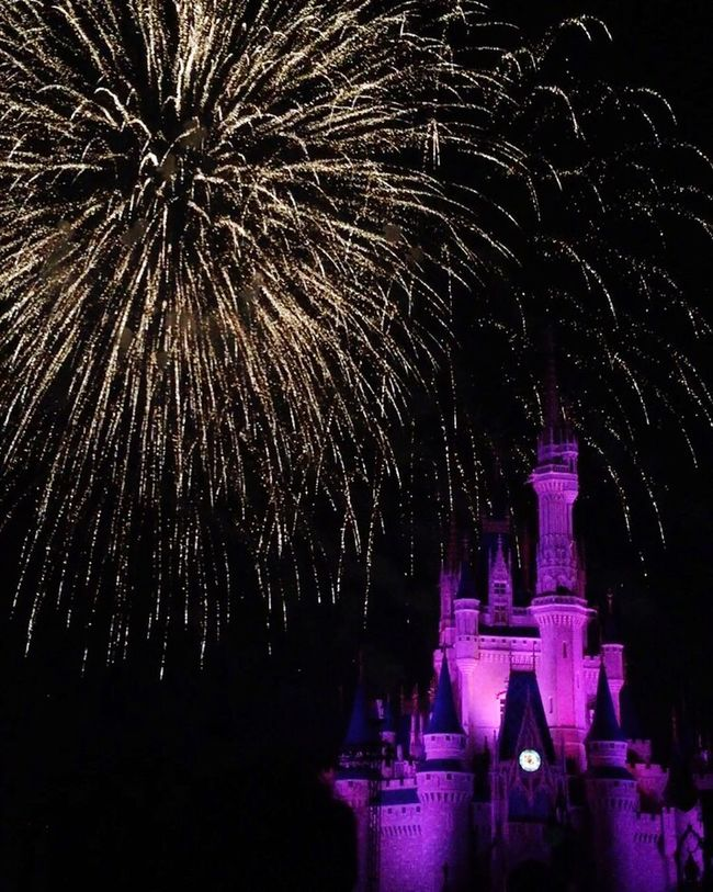 Night Celebration Illuminated Firework Display Motion Exploding Glowing Event Sky Firework - Man Made Object Multi Colored Sparks Outdoors Castle Disney Magic Cinderella Orlando Florida Pink Entertainment Tranquility