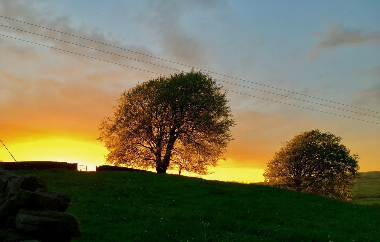 sky, sunset, tree, nature, cable, landscape, beauty in nature, field, no people, scenics, outdoors, cloud - sky, grass, low angle view, electricity pylon, vapor trail, day