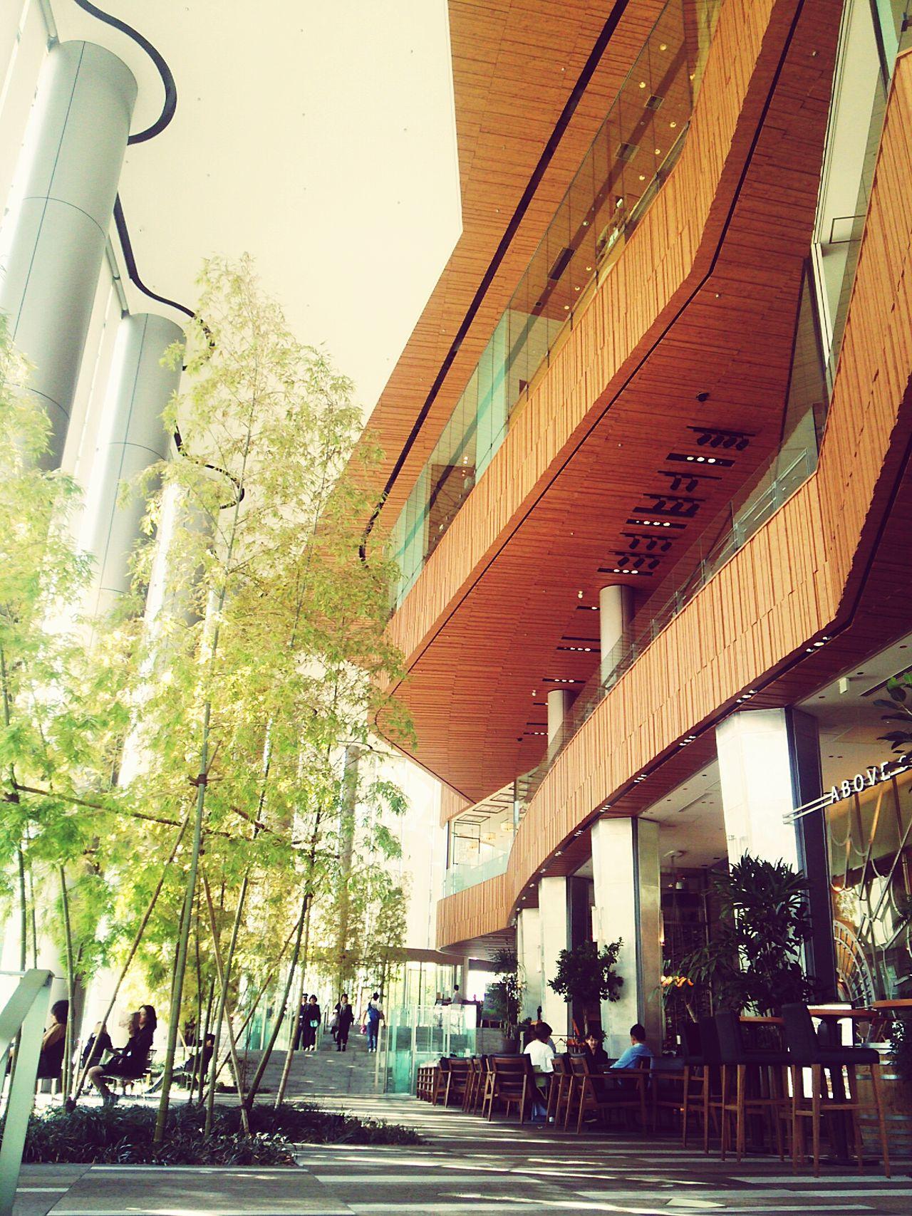 Architecture Built Structure Modern No People Day Tree Indoors  Tokyo Tokyo,Japan Toranomon Toranomonhills