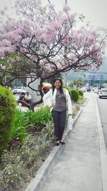 Adults Only One Person Tree Full Length Only Men Sky Car Mow Beatiful Beatiful Nature Nature Photography Nature Naturelovers Adult Women Love Viaje árbol Tree Tree Pink Blossom pink Pink Flower 🌸 Pinktree Photography Photo nature Naturelover