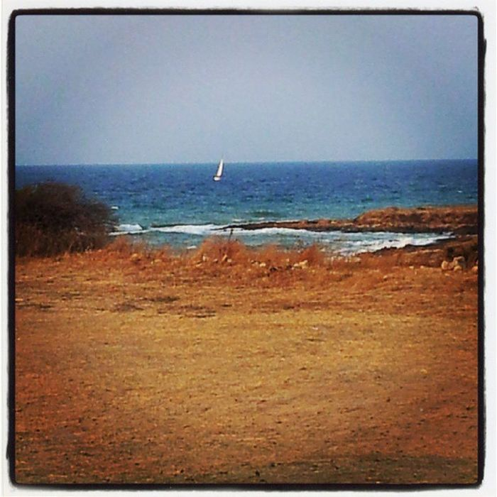 Un mare diverso... Adriatico Selvaggio