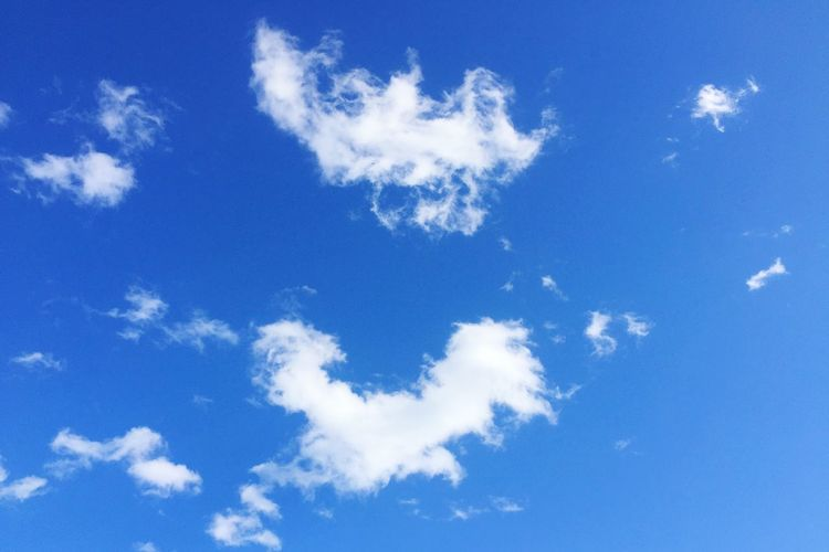 Blue Sky Cloud - Sky Low Angle View Beauty In Nature Nature Sky Only White Color Scenics Backgrounds Day Tranquility No People Outdoors