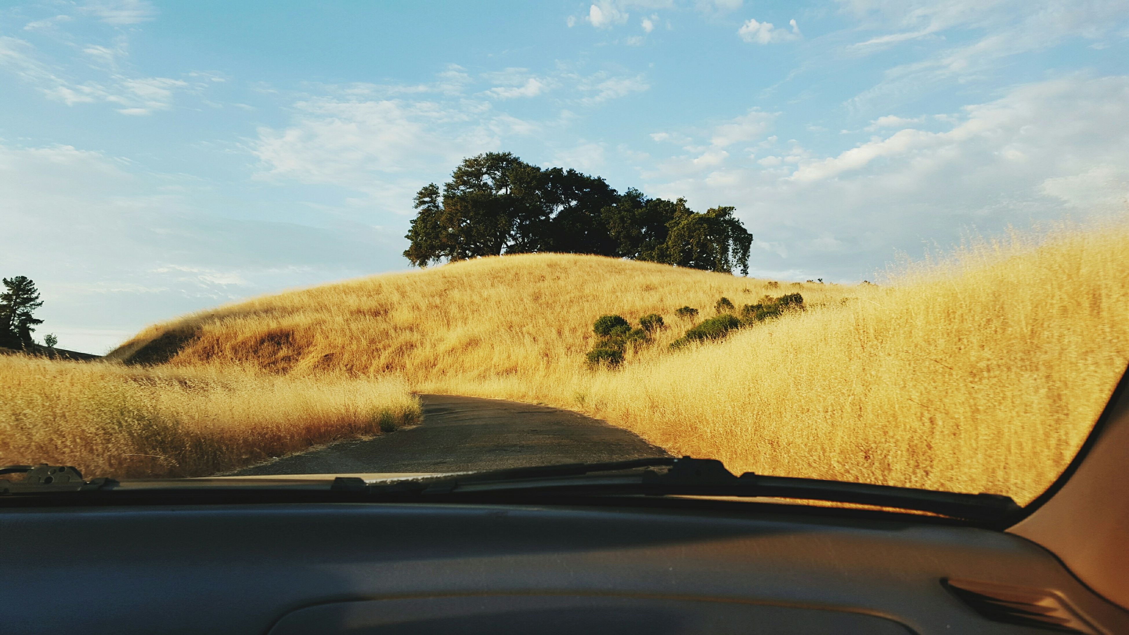 transportation, car, land vehicle, mode of transport, road, sky, tree, vehicle interior, landscape, windshield, sunlight, car interior, travel, part of, nature, cropped, window, day, cloud, glass - material