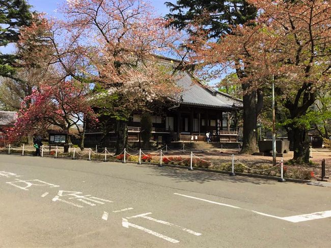Architecture Building Exterior Built Structure House Japanese  Outdoors Ryokan Street The Way Forward Tokyo Japan Dwellin Tree Ultimate Japan