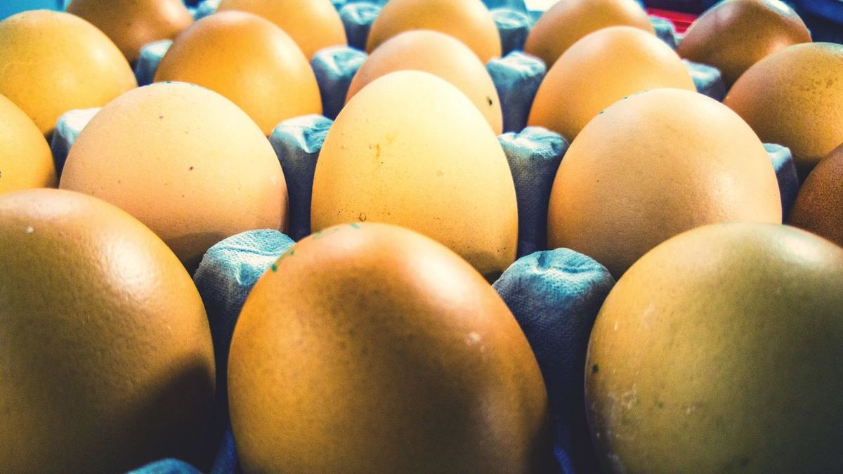 EyeEm Selects the eggs Indoors  Arrangement No People Full Frame Food Yellow Close-up Egg Carton Day Freshness Eggs...