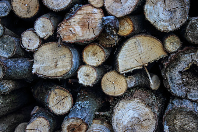 Abundance Arrangement Backgrounds Brown Close-up Deforestation Environmental Issues Firewood Forestry Industry Fossil Fuel Fuel And Power Generation Full Frame Heap Large Group Of Objects Log Lumber Industry Outdoors Repetition Stack Timber Wine Cork Wood Wood - Material Wooden Woodpile