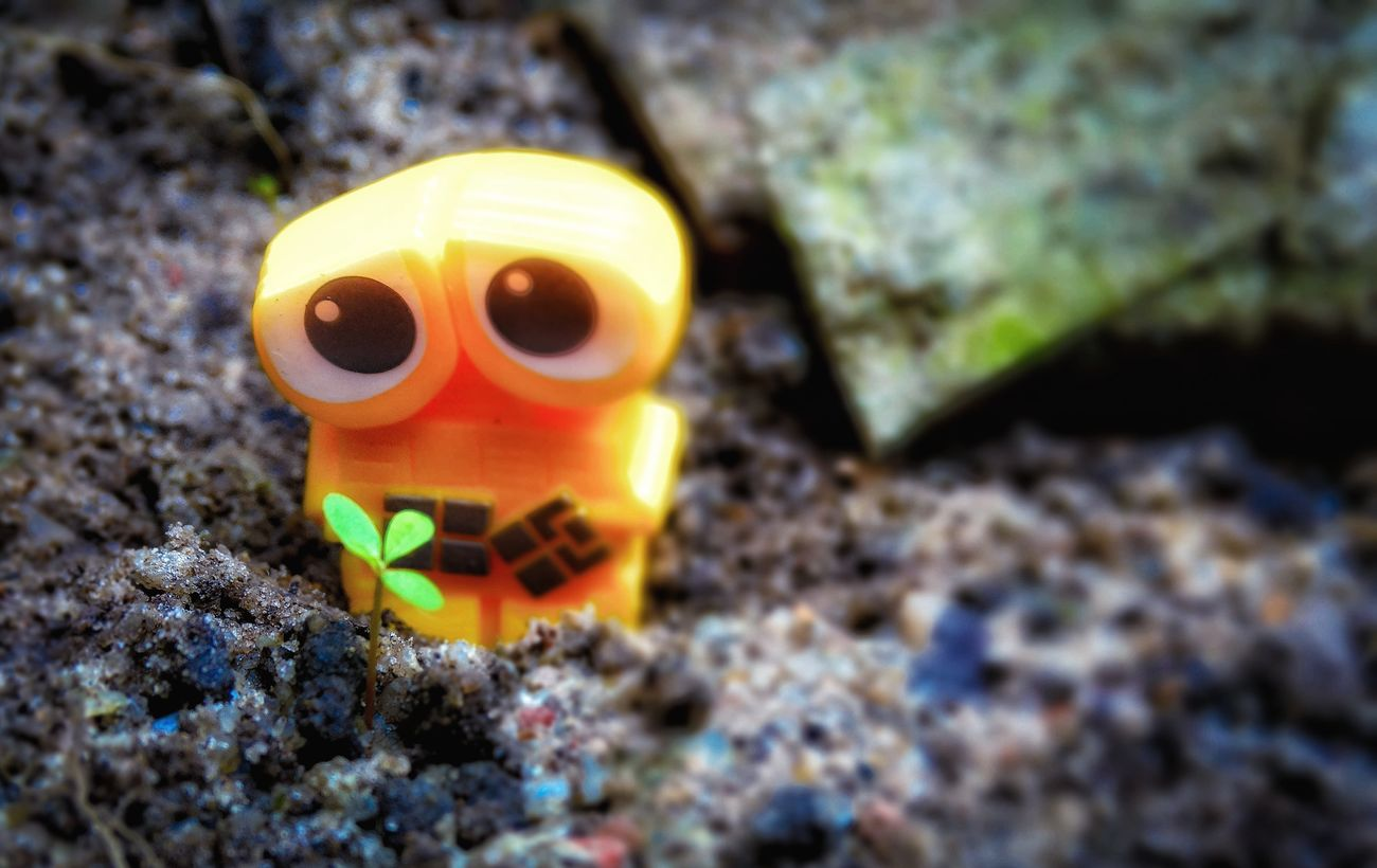 Close-up Focus On Foreground Outdoors Day Yellow Color Messy Man Made Object Vibrant Color Creativity No People Hx300 Wall-e Disney Pixar