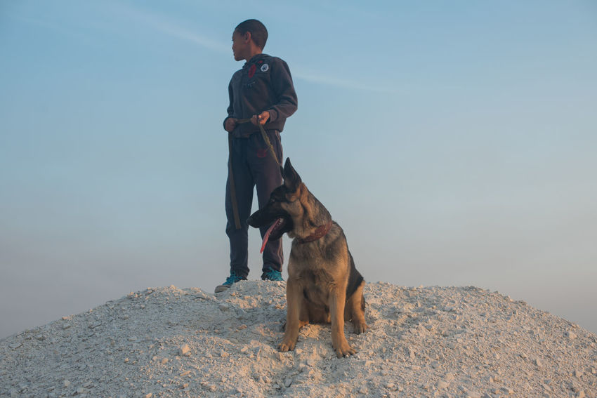 Grid Locked Alsatian Beauty In Nature Canine Day Dog Domestic Animals Full Length German Shepherd Mammal Nature One Animal One Person Outdoors Pets Real People Sky Standing