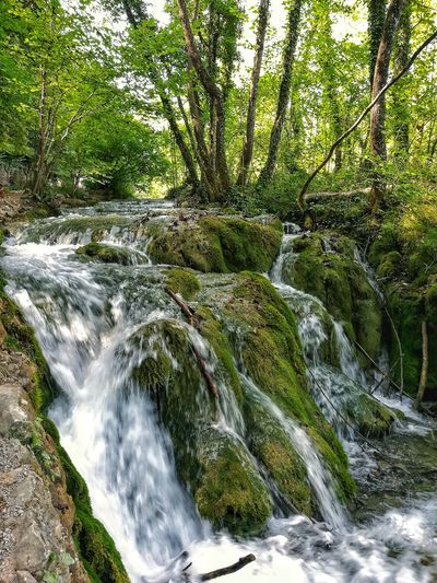Nature Tree Landscape Waterfall Outdoors No People Day Water Low Angle View Green Color Beauty In Nature HuaweiP9 Croatia Pletvice