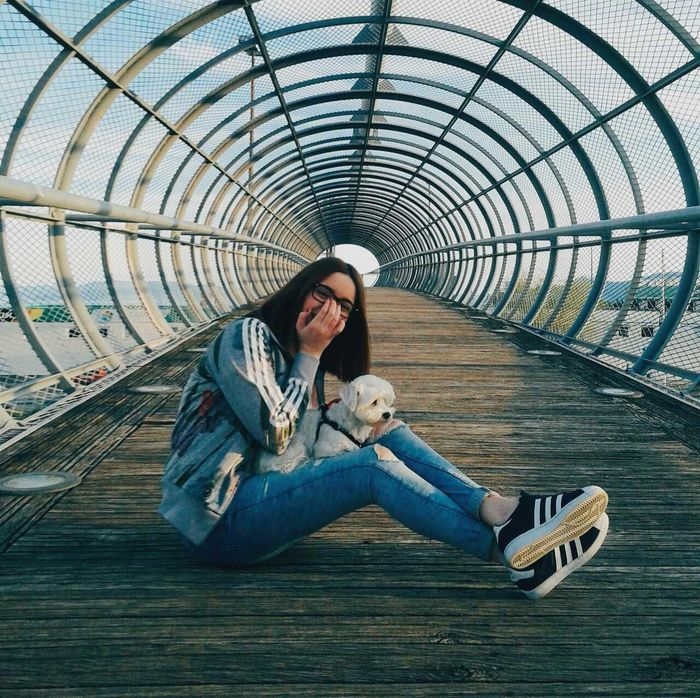 I miss being happy with you. Me Girl Dog Dog Love Maltese Adidas Superstar Adidasoriginals Adidassupertar Bridge