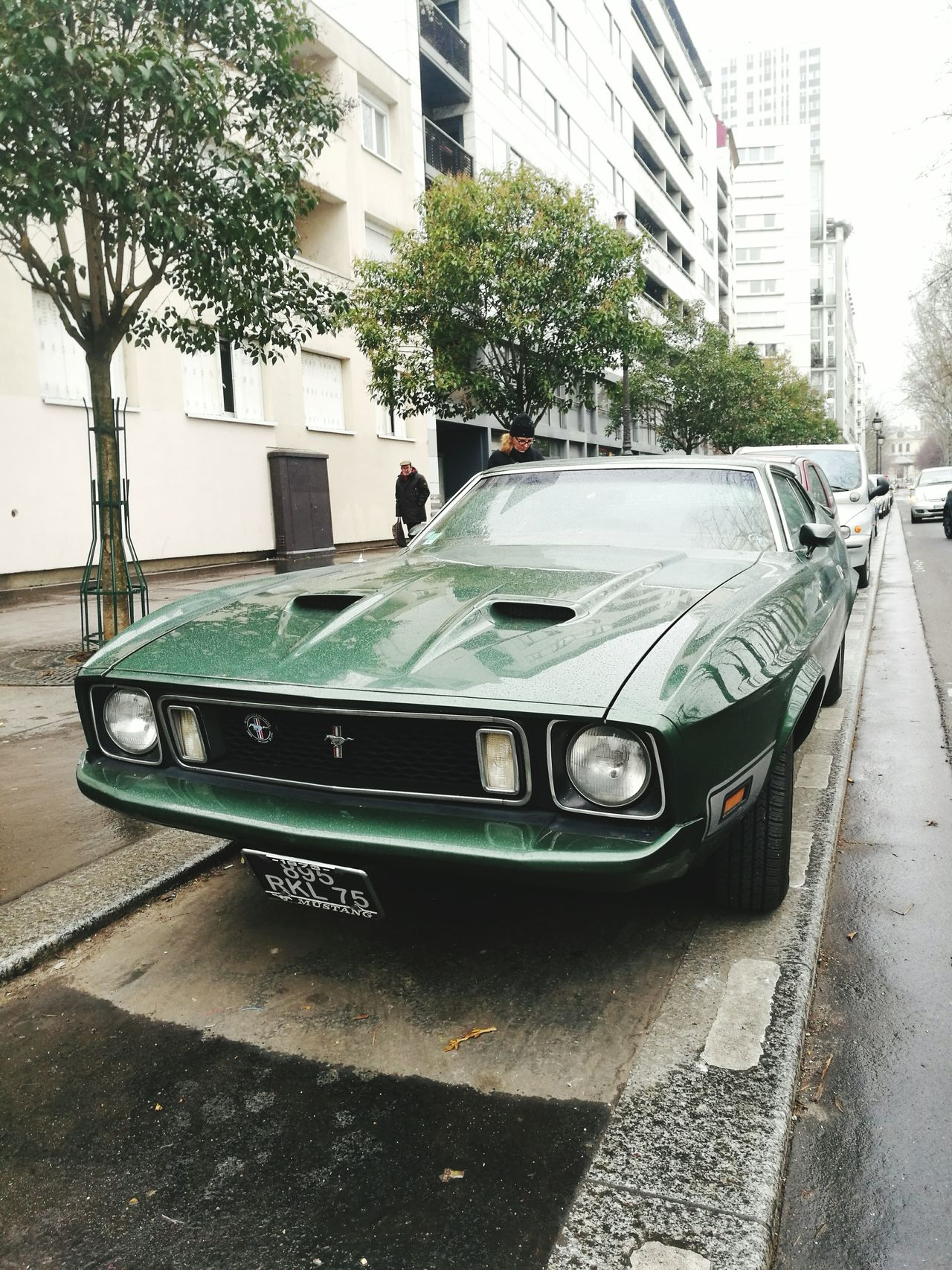 Fordmustang Ford Ford Mustang Mach 1 Ford Mustang Mach 1 Mustang General Motors  Paris Paris France Transportation Car City Outdoors Architecture No People Building Exterior Built Structure Day Huawei HuaweiP9