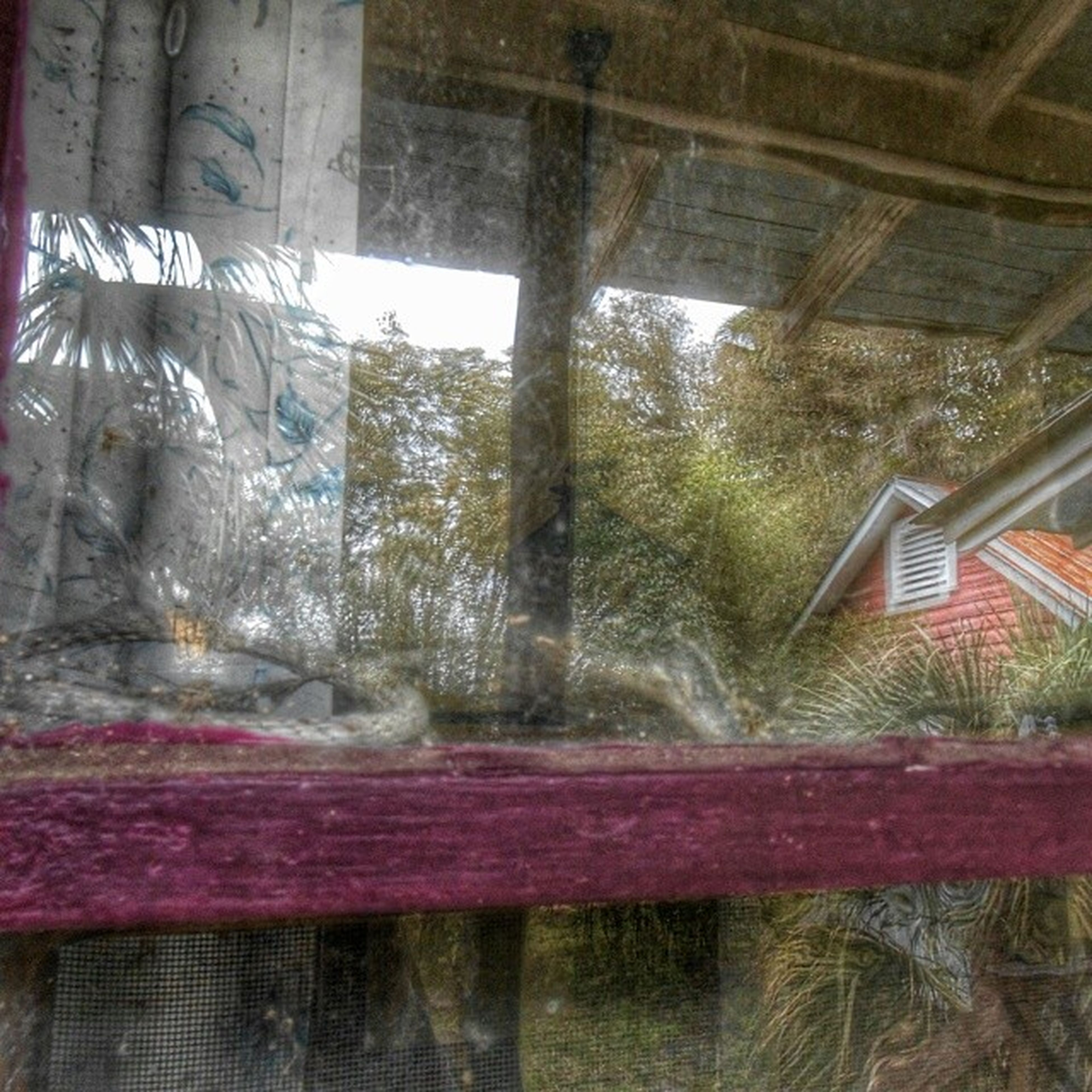 indoors, window, curtain, interior, glass - material, architecture, built structure, transparent, ceiling, home interior, messy, abandoned, wall - building feature, damaged, graffiti, day, house, no people, obsolete, reflection