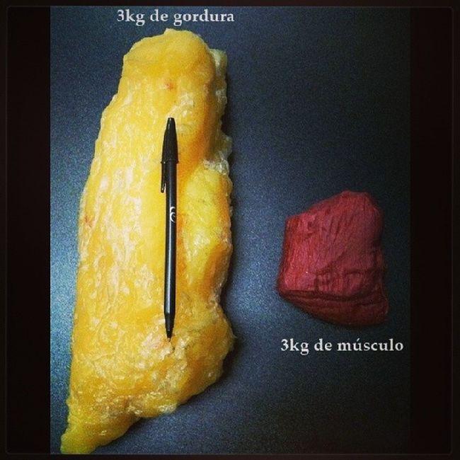 Quantidade não é, e nunca foi QUALIDADE!!!! Magraparasempre Magraparasempreecomsa úde Projetobefit Projetoerikaalk fitness fit dieta treino EmBuscaDos10%