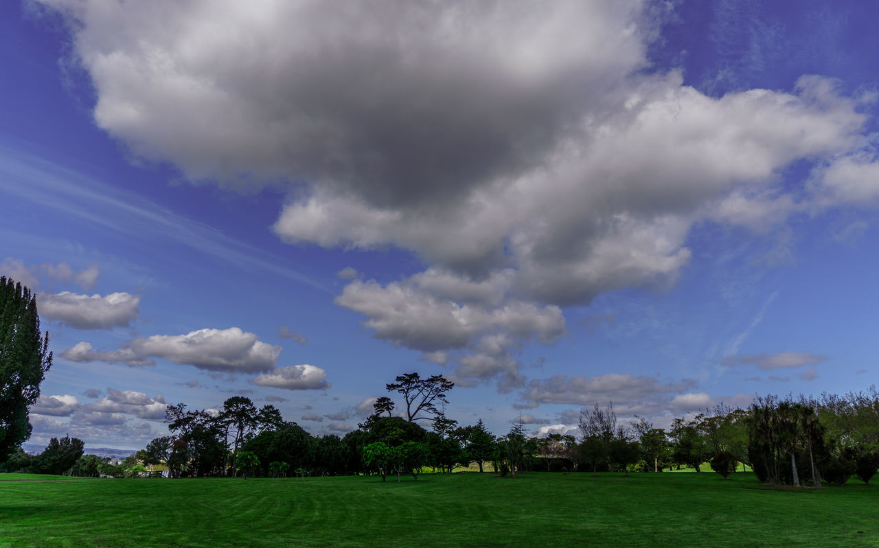 Cornwall Park. Auckland, New Zealand. Auckland Beauty In Nature Blue Cloud Cloudy Cornwallpark Countryside Day Field Grass Green Color Growth Idyllic Landscape Nature Newzealand Non-urban Scene Outdoors Remote Rural Scene Scenics Sky Tranquil Scene Tranquility Tree