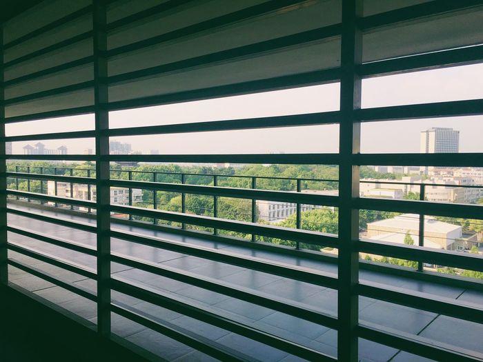 With Friends University Like Art Artschool Roof Sky Afternoon Dreaming Life Friends School