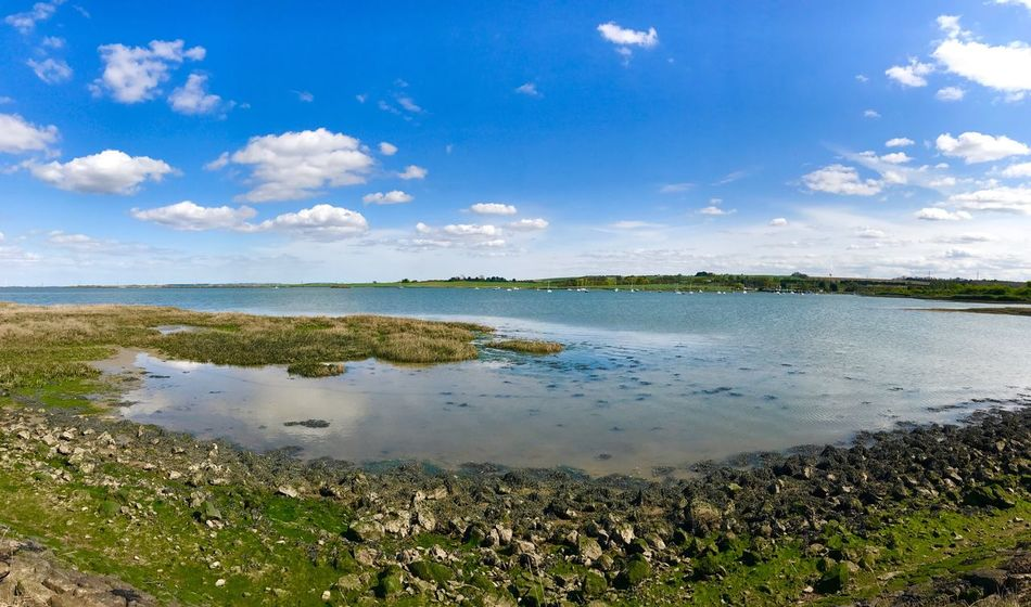 Medway Estuary Medway River Mud Flats Estuary Sea Spring Water Tranquil Scene Tranquility Sky Landscape Beauty In Nature Grass Shoreline