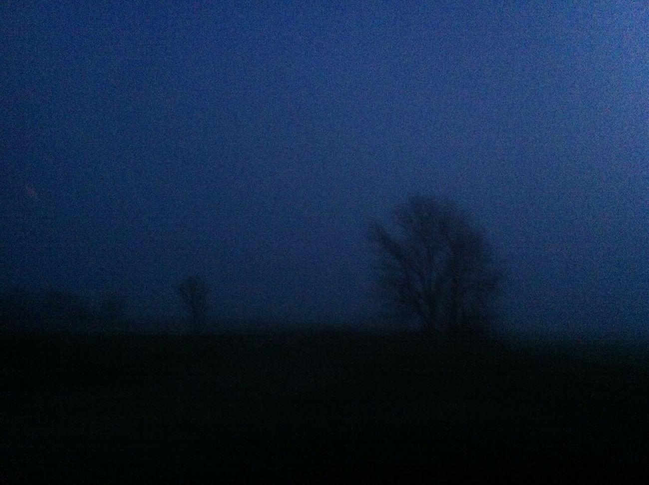 утро туман темно Природа