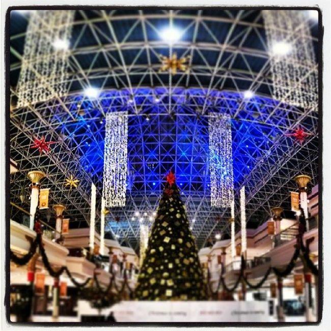 Xmas tree at Wafi mall in Dubai UAE