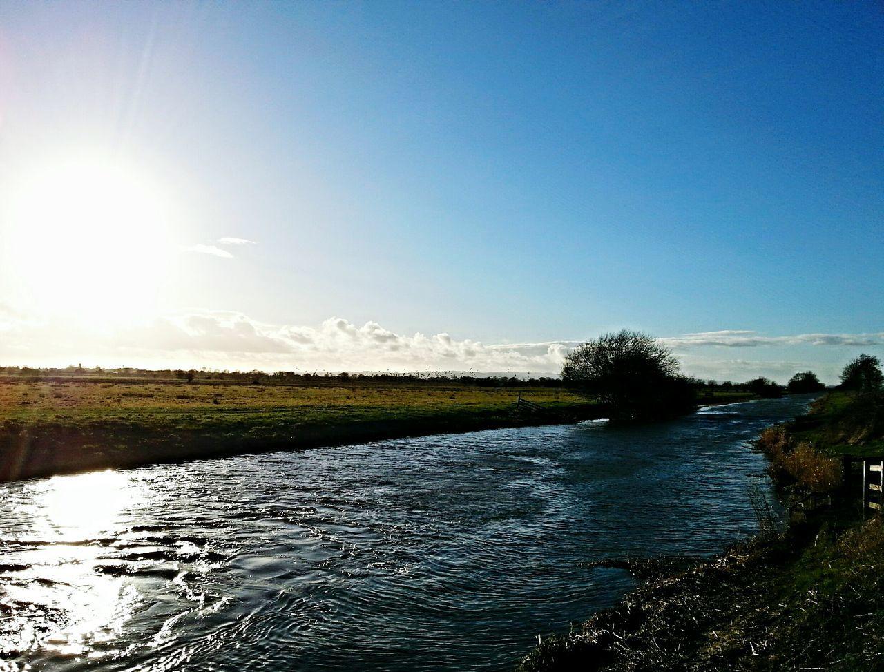 Summer Memories 🌄 Nature On Your Doorstep Somerset Levels Uk Gray Lakes Bird Sanctuary