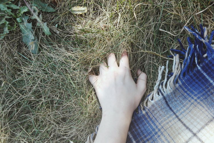 Strange Photo Nature LoveNature Cozy Place Pacification Touching Merger Country Life Plant Picnic Hand Morning Warm Blue Plaid Silent Moment Junction