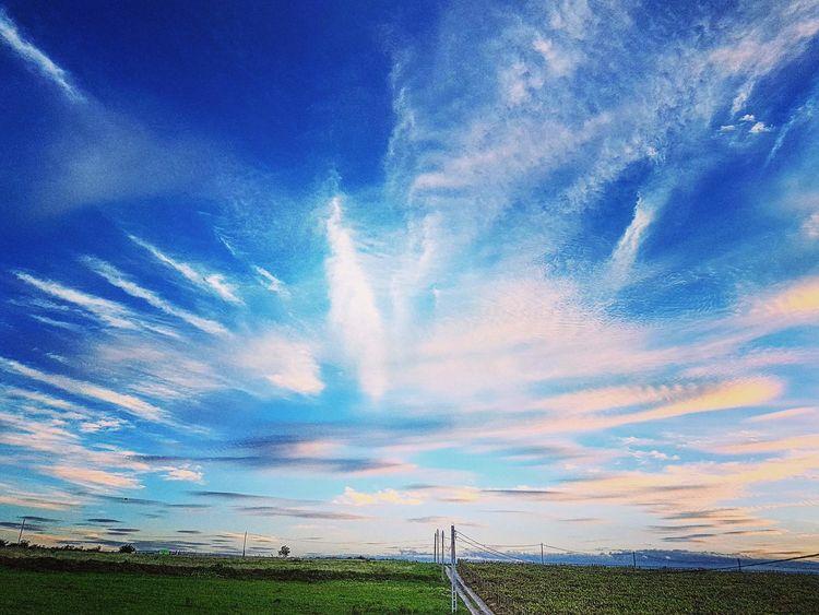 Sky Blue Sky PhonePhotography Sky Scape Sky And Clouds Sky Porn Sky_collection Spikes On Sky Cloudsporn Intresting Sky Amazing Sky Landscape EyeEmNewHere Phone Photography Clouds Shape Neon Life Breathing Space