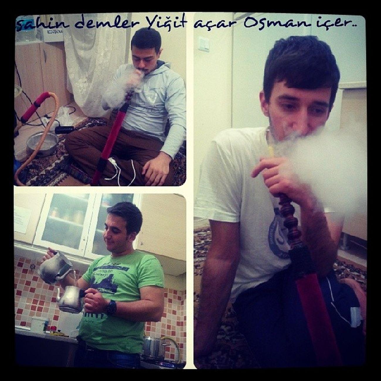 Sahin Demler Yigit Acar osman icer sakarya sakaryauniversitesi saü saugenclik izmit @saugenclik