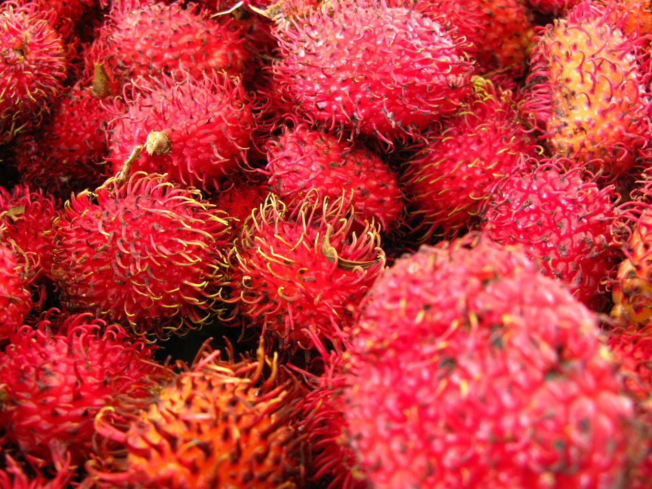 Backgrounds Close-up Day Food Food And Drink Freshness Fruit Full Frame Healthy Eating No People Outdoors Rambutan Red Exotic Fruits