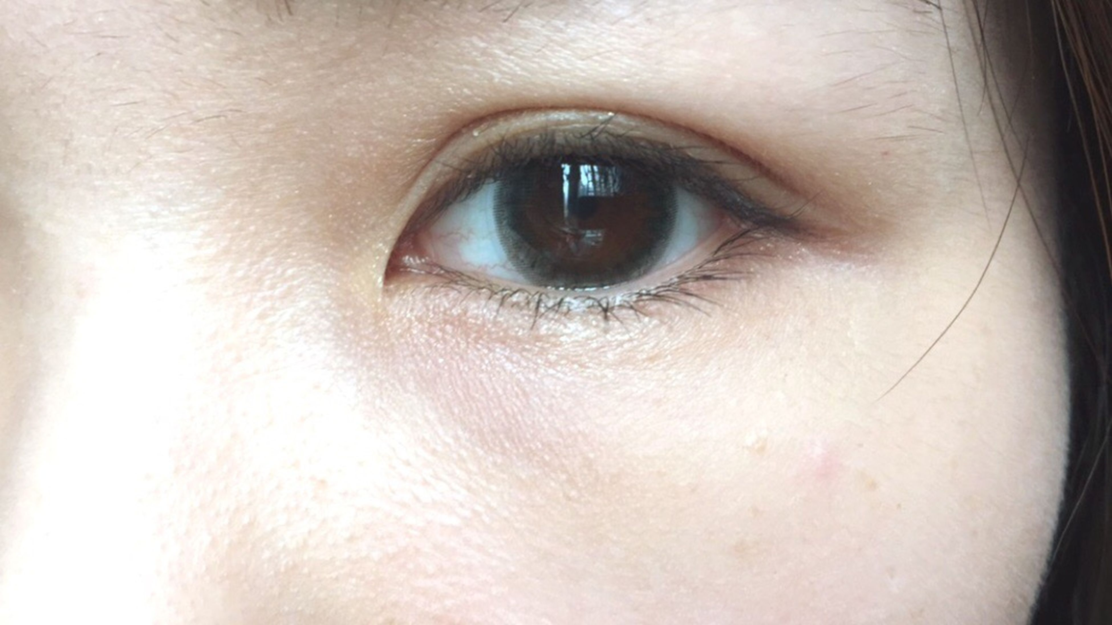 human eye, close-up, eyelash, indoors, eyesight, looking at camera, portrait, part of, human face, human skin, extreme close-up, sensory perception, iris - eye, full frame, lifestyles, eyebrow, headshot